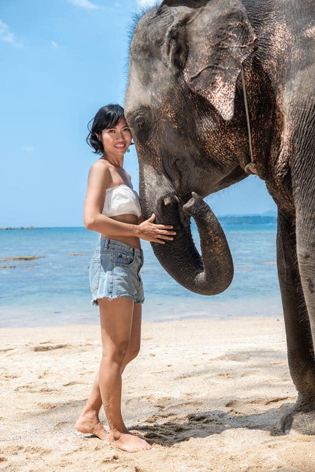 Elephant camp in kamala
