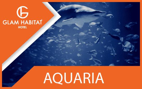 Caractéristique Aquaria Phuket